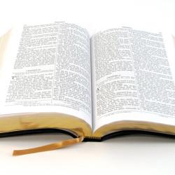 leia-a-biblia